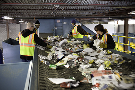 Employees Sorting Recyclable Waste