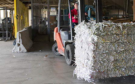 Moving Pallet of Shredded Paper